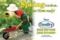 Chem-Dry Postcard Spring Front Style 4