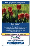 Chem-Dry Postcard Spring Front Style 9